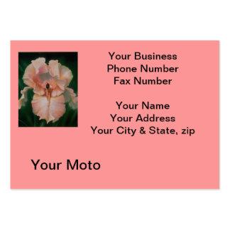 Tarjeta rosada del olor del angora plantilla de tarjeta de visita
