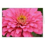 Tarjeta rosada multiusos de la flor