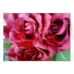 tarjeta--rosas rosados