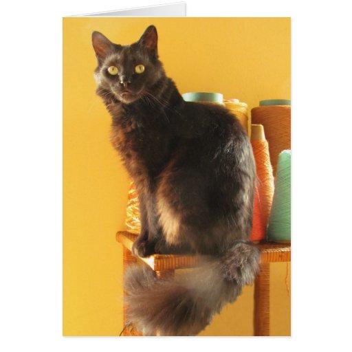 Tarjeta - saludo - gato con hilado