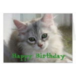 Tarjeta siberiana del gatito del feliz cumpleaños