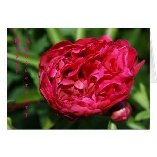Tarjeta subió Peony rosado del aniversario