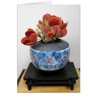 Tarjeta suculenta colorida por la planta perfecta