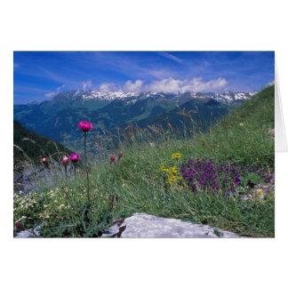 Tarjeta suiza de las montañas