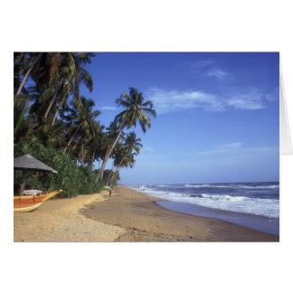 Tarjeta tropical de la escena de la playa del para