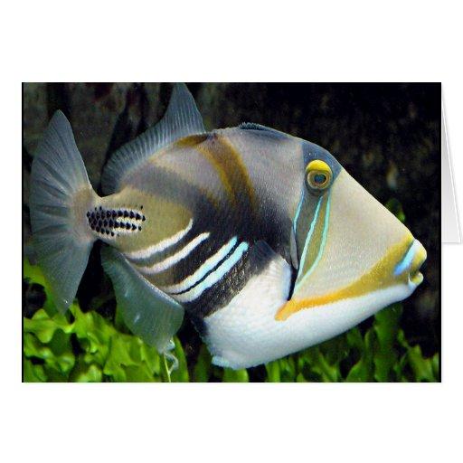Tarjeta tropical hawaiana de los pescados