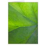 Tarjeta verde de la hoja