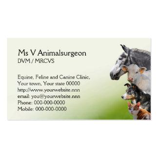 Tarjeta veterinaria de la cita y de visita de la p tarjeta de visita