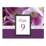 Tarjeta violeta púrpura del número de la tabla postal