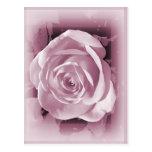 Tarjeta y postal color de rosa rosadas suaves - Je