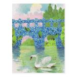 Tarjetas blancas del cisne del vintage tarjetas postales