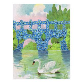 Tarjetas blancas del cisne del vintage postal