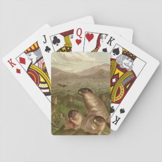 Tarjetas coloridas del ejemplo de la marmota del barajas de cartas