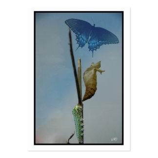 Tarjetas de comercio del artista de la mariposa tarjetas de visita grandes