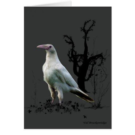 Tarjetas de felicitación blancas del cuervo