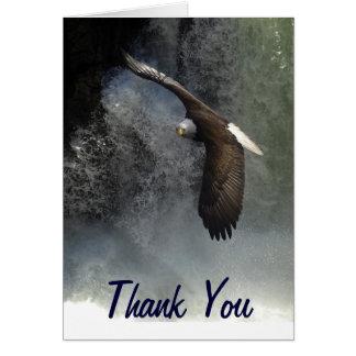 Tarjetas de felicitación de Eagle calvo