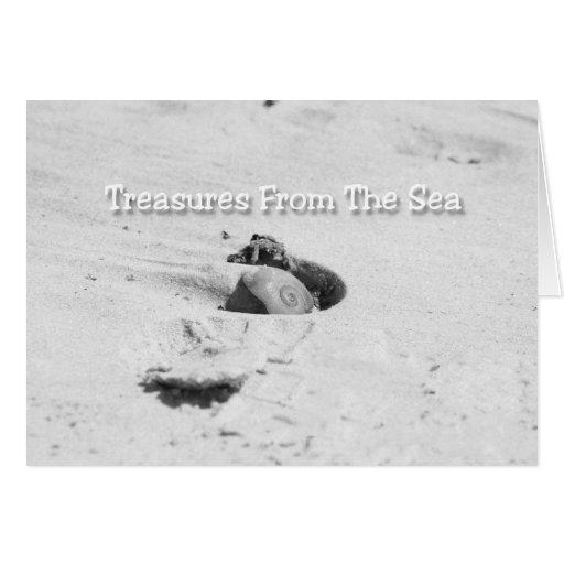 Tarjetas de felicitación de la playa del Seashell