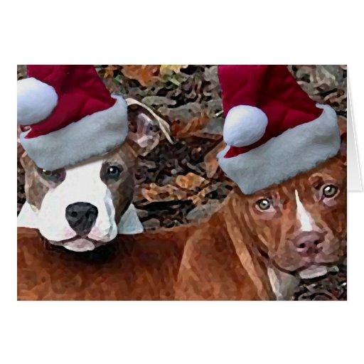 Tarjetas de felicitación de los perritos de Pitbul