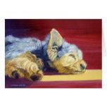 Tarjetas de felicitación de Yorkshire Terrier