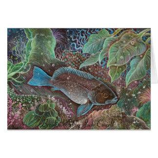 Tarjetas de felicitación del bacalao de Breaksea