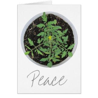 Tarjetas de felicitación del signo de la paz de la