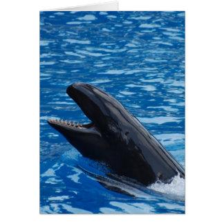 Tarjetas de felicitación falsas de la orca