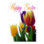 Tarjetas de felicitación felices de los tulipanes postal