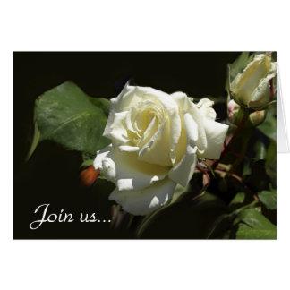 Tarjetas de felicitación salvajes del rosa blanco