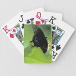 Tarjetas de índice enormes negras de Swallowtail Baraja Cartas De Poker