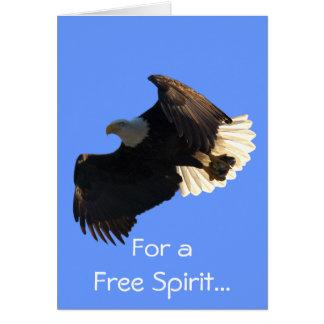 Tarjetas de la colección del vuelo del espíritu