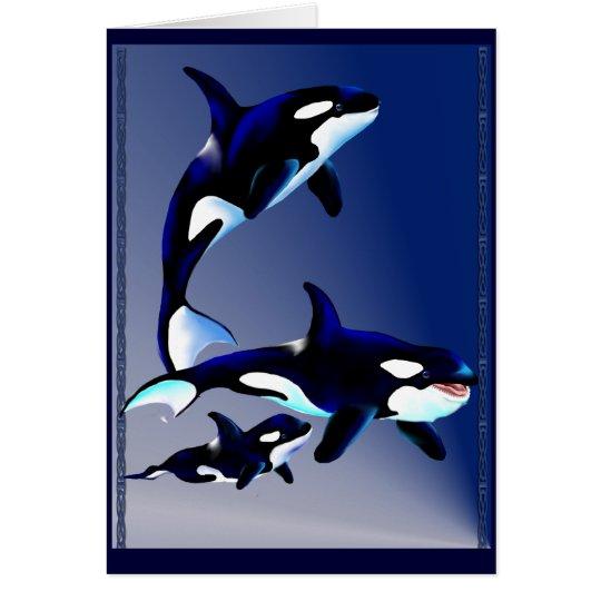Tarjetas de la familia de la orca