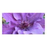 Tarjetas de la foto - Clematis púrpura Tarjetas Personales Con Fotos