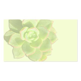 Tarjetas de marfil suculentas verdes del lugar tarjetas de visita