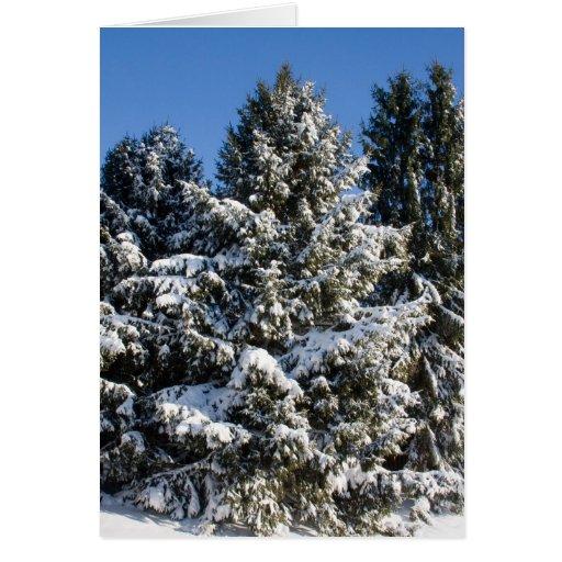 Tarjetas de Navidad del paisaje