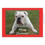 Tarjetas de Navidad inglesas del dogo