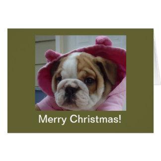 Tarjetas de Navidad inglesas del perrito del dogo