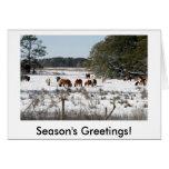 Tarjetas de Navidad salvajes del potro de Chincote