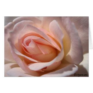 Tarjetas de nota color de rosa rosadas