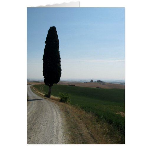 Tarjetas de nota de Cypress italiano