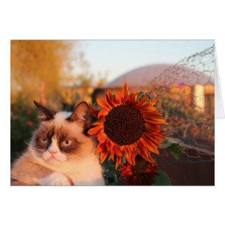 Tarjetas de nota gruñonas del girasol del gato