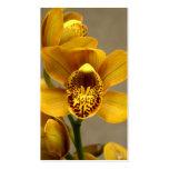 Tarjetas de visita amarillas de la orquídea