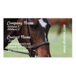 Tarjetas de visita árabes lindas del caballo