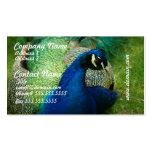 Tarjetas de visita azules del pavo real