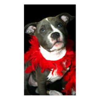 Tarjetas de visita azules del perrito de Pitbull