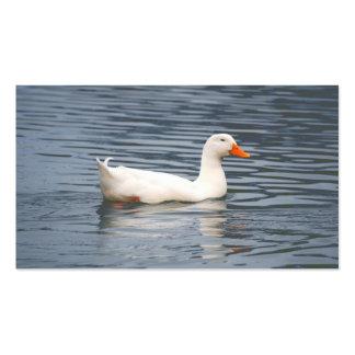 Tarjetas de visita blancas de la fotografía del pa