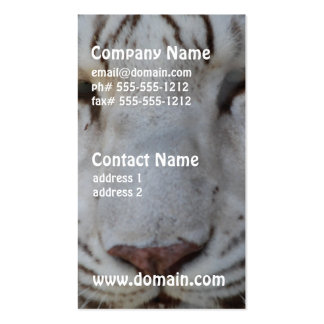 Tarjetas de visita blancas dulces del tigre