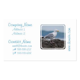 Tarjetas de visita costeras de la gaviota