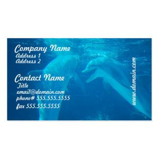 Tarjetas de visita de charla de los pares del delf