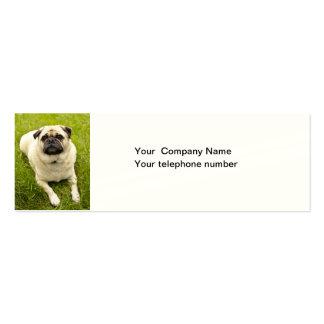 Tarjetas de visita de encargo de la foto del perro
