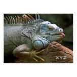 Tarjetas de visita de encargo de la iguana